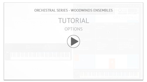 Video Tutorial: Woodwinds Ensembles Tutorial: Options